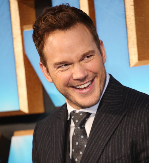 Sorry, Chris Pratt Fans, But He Won't Take A Picture With You