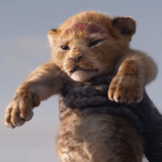 "Here's The Teaser Trailer For The Live-Action Version Of ""The Lion King"""