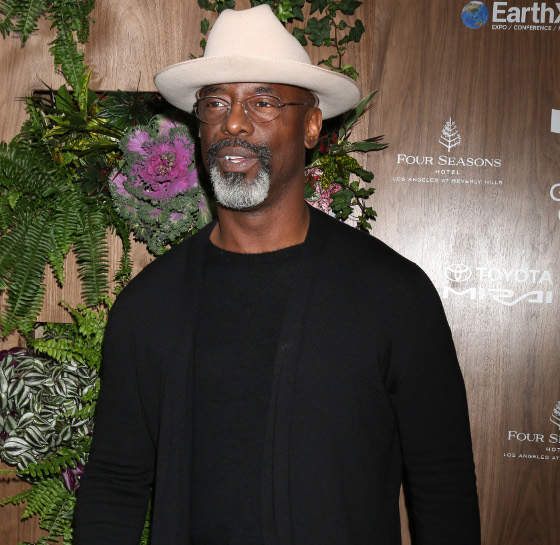 Dlisted Isaiah Washington Resembles Those Remarks About The Toxic